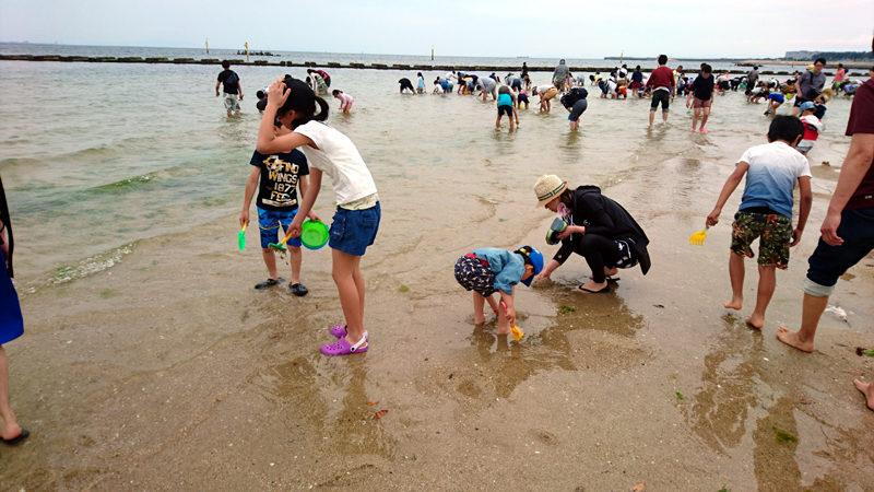 二色の浜で潮干狩り